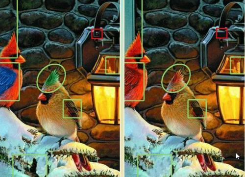 5 отличий онлайн игра отличия Птички Кардинал на Ёлке ответ.jpg