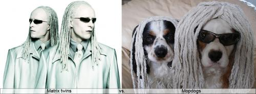 Matrix twins Матрица близнецы.jpg