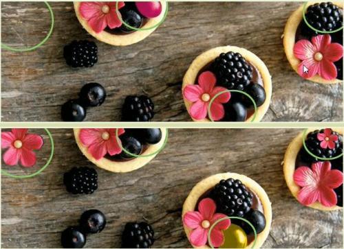 5 отличий онлайн уровень 1 -02 ягоды ежевика цветы.jpg