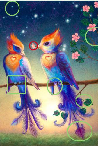 5 отличий онлайн картинка изображение ответ птицы на ветке.jpg