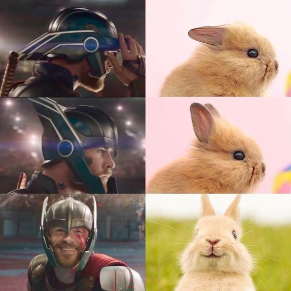 Тор и кролик / Thor vs Rabbit