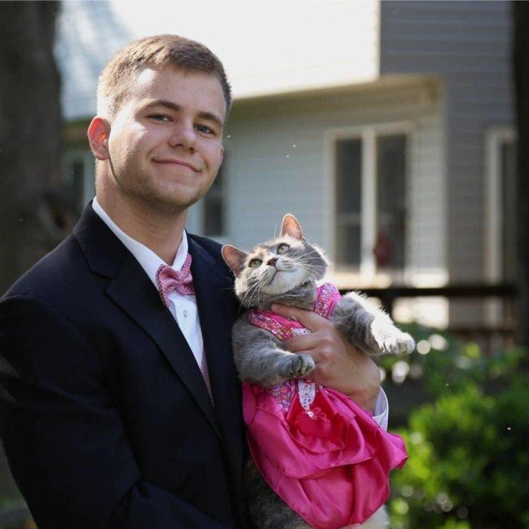 Кот и его любимый хозяин